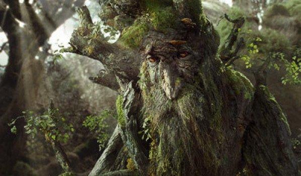 Le roi des arbres